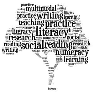 What Literacies?